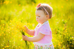 Małe dziecko bawić się z polem kwitnie na wiośnie lub letnim dniu Fotografia Stock