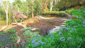Mae Fah Luang Arboretum, Doi Chung Moob, Chiang Rai, Tailândia filme