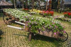 Mae Fah Luang Garden. Chiangrai ,Thailand Royalty Free Stock Photo