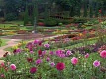 Mae Fah Luang Garden Tailandia Fotografía de archivo