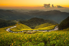 MAE HONG SON, THAILAND Stock Photography