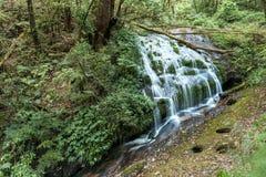 Mae Pan Waterfall. Doi Inthanon National Park, Chiang Mai, Thailand.  Royalty Free Stock Images