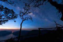 Mae Ping river view point. Silhouette tree with the milky way and mountain lake on background before sunrise Stock Photos