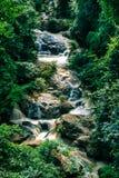 Mae Sa-Wasser fällt in den Wald bei Mae Rim, Chiang Mai, Thailan lizenzfreie stockbilder