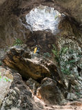 Mae Sap Cave, Thailand royalty-vrije stock afbeeldingen