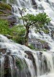 Mae Ya Wasserfall in Chiang Mai Stockfoto