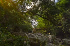 Mae-Ya Waterfall. In Chiang Mai Thailand Stock Photo