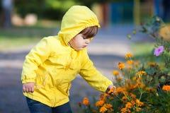 Małej dziewczynki macania kwiaty Obraz Royalty Free