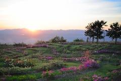 Maemoh park narodowy Zdjęcie Stock