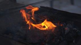 Maestría en blacksmithing almacen de metraje de vídeo