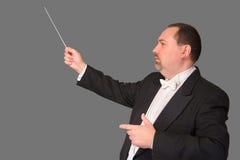 Maestro isolado: Perfil imagens de stock