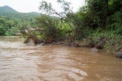 - Maetaeng flod - flödad ritt Arkivfoton