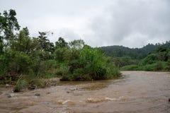 - Maetaeng flod - flödad ritt Royaltyfri Foto