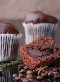 Mafine con cioccolato e la glassa del cioccolato Servito con i chicchi ed il timo di caffè fotografia stock