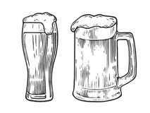Mag del vidrio de cerveza Fotografía de archivo libre de regalías