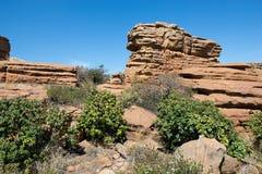 Magaliesberg ojämnt oåtkomligt landskap, Sydafrika Royaltyfri Bild