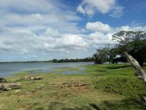magalla au-dessus de ciel de couleur de rivière photographie stock
