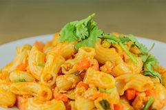 Magaroni stockfoto