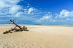 Magaruque海岛-莫桑比克 免版税库存图片