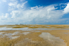 Magaruque Island - Mozambique Royalty Free Stock Images