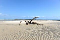 Magaruque Island - Mozambique Royalty Free Stock Photography