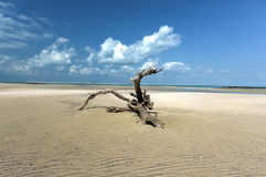 Magaruque Island - Mozambique Royalty Free Stock Photography