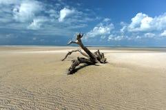 Magaruque Island - Mozambique Stock Image