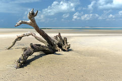 Magaruque Island - Mozambique Stock Images