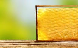 Magasin av den vaxade honungskakan från en bikupa Arkivfoton
