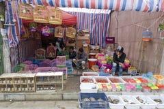 Magasin de bêtes chinois du marché photos libres de droits