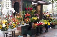 Magasin de fleur Photos stock