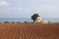Magasin de grain de Trulli dans le domaine labouré en Puglia, Italie Image de paysage Photos stock