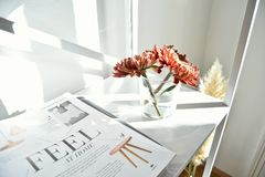 Magazine, Article, White, Room Royalty Free Stock Photo