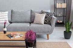 Magazines et bruyère sur la table en bois près du sofa gris confortable avec des oreillers, vraie photo avec l'espace de copie image libre de droits