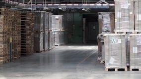 Magazyn z stojakami i półkami wypełniającymi z kartonami, zawijającymi w folii na drewnianych barłogach klamerka Ampuła i światło zbiory wideo