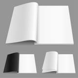 magazynu liczby realistyczny set dwa Obraz Stock