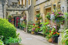 Magdalen College historic buildings and exotic plants royalty free stock photo