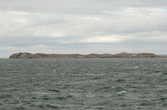 Magdalena Island - Χιλή στοκ φωτογραφία