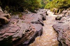 Magdalena River in San Agustin, Kolumbien stockbilder