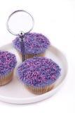 Magdalenas de la vainilla, con el buttercream púrpura-coloreado Foto de archivo