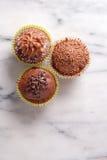 Magdalenas del chocolate Fotos de archivo libres de regalías