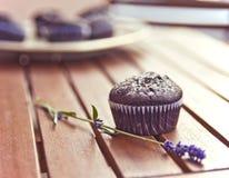 Magdalenas del chocolate Foto de archivo