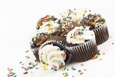 Magdalenas del chocolate Fotografía de archivo libre de regalías