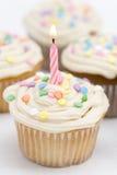 Magdalenas del cumpleaños Imágenes de archivo libres de regalías