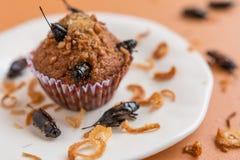 Magdalenas del pl?tano con las comidas del insecto foto de archivo libre de regalías