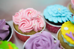 Magdalenas en colores pastel dulces Imagenes de archivo