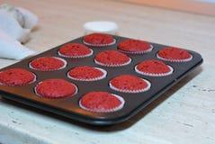 Magdalenas rojas del terciopelo Imágenes de archivo libres de regalías