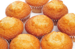 Magdalenas, typical spanish plain muffins Stock Images