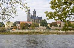 Magdeburger Dom på Elbe härlig höstplats Royaltyfri Foto