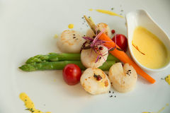 Mage of gourmet seared scallops with garnishes. Royalty Free Stock Photography